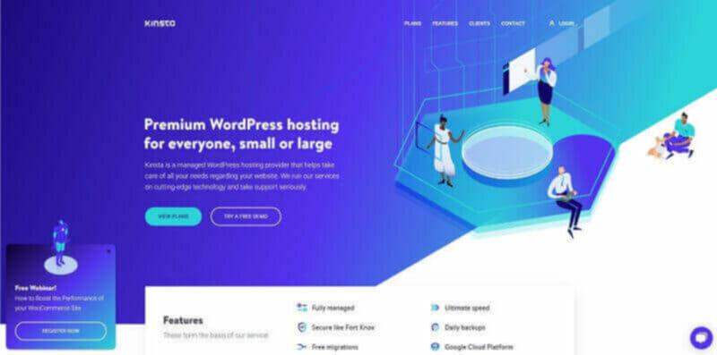 Kinsta premium web hosting for fast-growing businesses