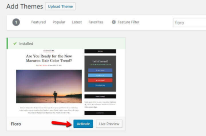 Activate WP theme for blog