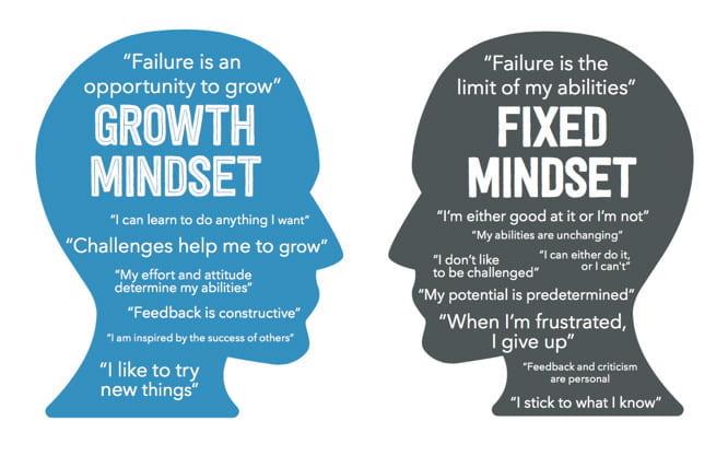 Growth mindset vs learning mindset for entrepreneur characteristics