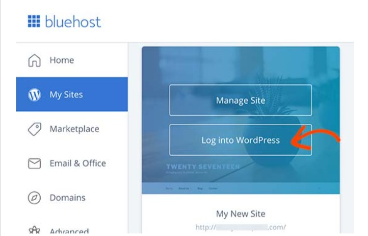 Login to Bluehost and log into WordPress