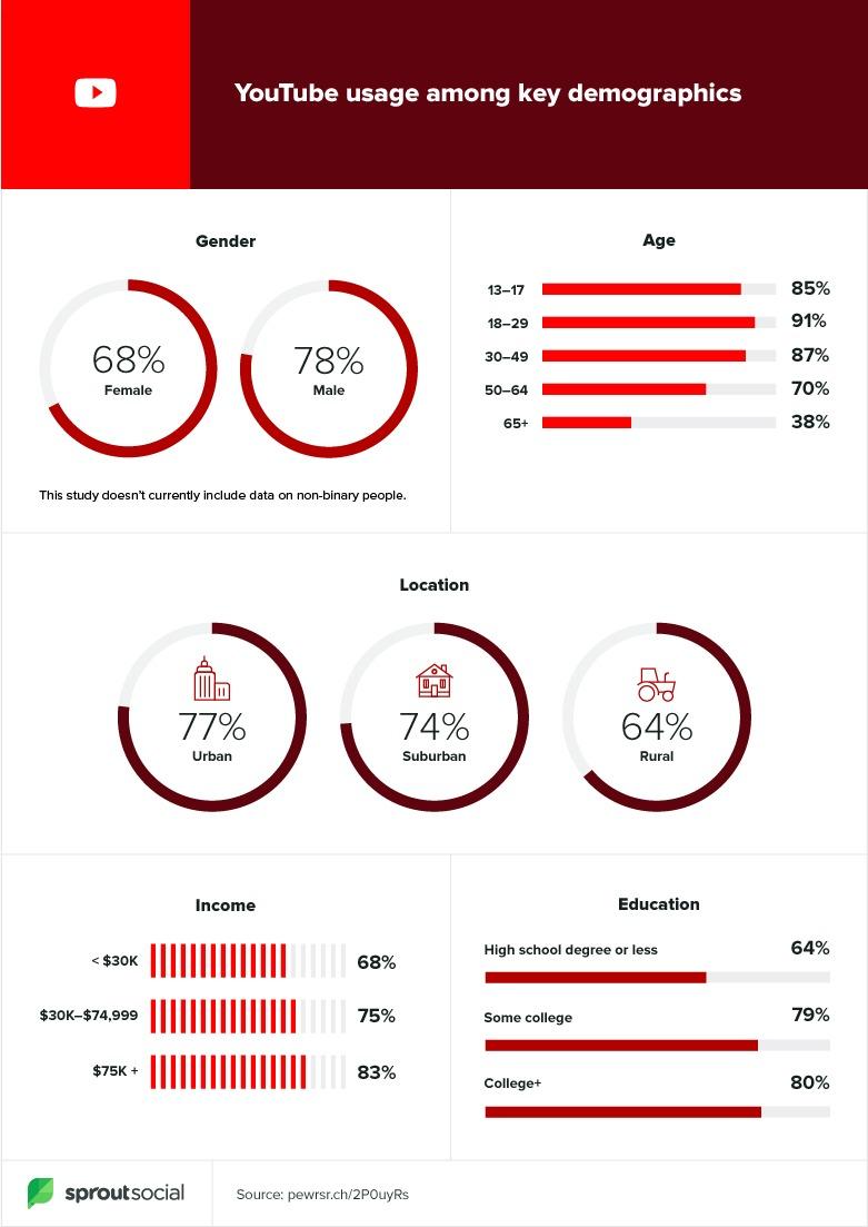 youtube demographics