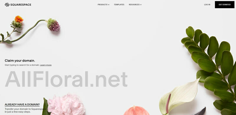 Squarespace A Beginner Friendly Option for Creating Blogs, Portfolio Sites and Online Stores.