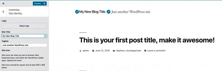 site identity of your first WordPress website