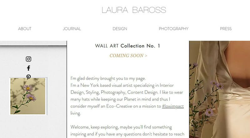 Laura Baross is a Interior Designer website that focusing on sustainable living.