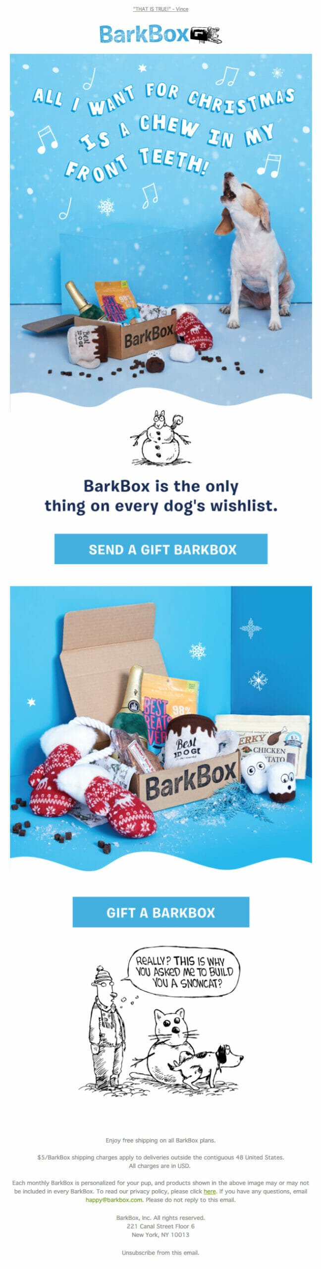 Barkbox is an Email Newsletter Example For Stores Selling Products For Dogs and Christmas