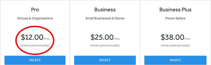 Weebly Pro Plan for Small Businesses