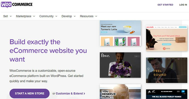 WooCommerce is the Best Choice for High Customizability and for Business Websites Run On WordPress