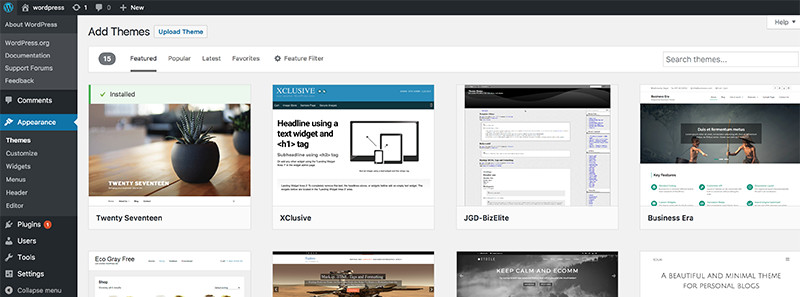Filtering the available themes by feature